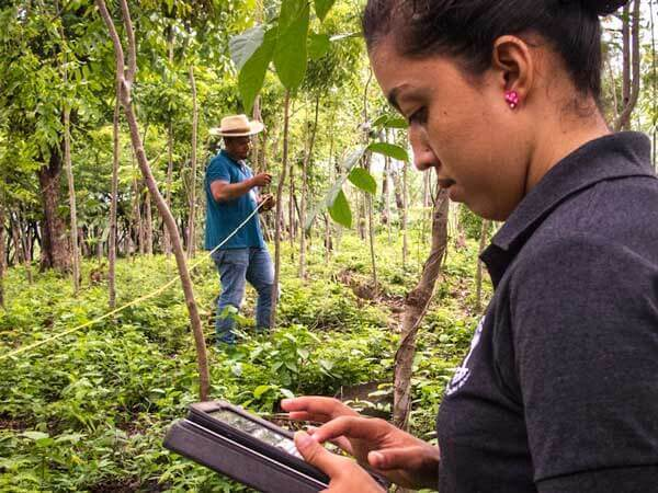 Monitoring Carbon Tree Planting Nicaragua