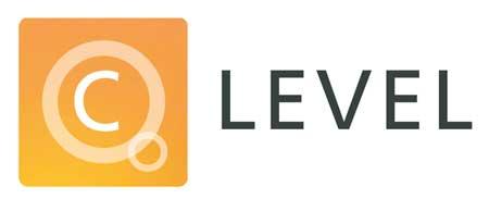 C Level Logo